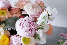 Gardens To Get Lost In / Gorgeous gardens / by Graziela Gems