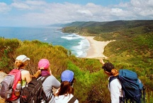 Hiking in Royal National Park