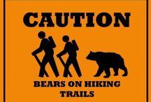 Appalachian Trail ideas and Prep / by Harley Quinn