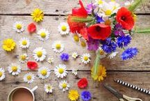 INSPIRE: FLOWER POWER / Floral prettiness...