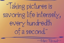 We <3 Photography / Photography-related quotes and funny photography pins! / by Backdrop Express