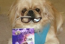 Dogs & cats that read Books / Animals reading books