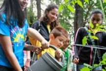 Citizen Science Rocks! / EcoLiteracy, Environmental Stewardship, Empowered Kids