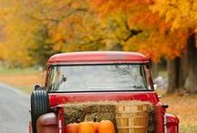 Autumn Inspiration / photos food and decor for the fall