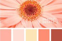 Color Combos - A colorful world! / These are some gorgeous color combos and/or amazingly colorful items!! / by Stephanie Durel