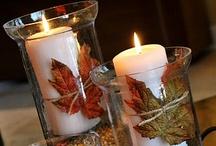 Thanksgiving/Fall / by Renee Shepard Allen