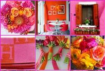 Pink & Orange / The Play of Pink with Outrageous Orange
