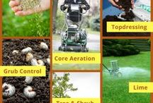 Lawn Care / Core aeration, overseeding, topdressing - learn all about lawn care here.
