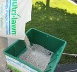 Fertilizing / Make sure your lawn stays lush & thick. Get the lowdown here!
