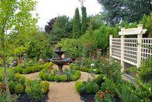 Backyard Beauty / by Cheryl Tarasenko