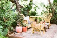 Wooded garden / by Megan Noonan Photography
