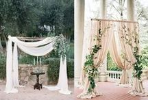 Backdrops / Gorgeous backdrops for great photo ops!
