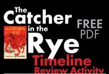 Catcher in the Rye Lesson Ideas / Interesting strategies for introducing Holden to high school English classes.