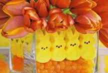 Easter Bunny time! / by Kellie Baucom