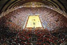 Hokie Bucket List / What's the one Virginia Tech tradition every Hokie student needs to experience before graduation? Here are a few.  (See the complete list: www.hokiebucketlist.alumni.vt.edu)