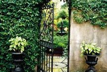 Gardens / Green spaces of all shapes and sizes.