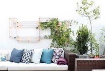 home : garden/backyard / #home #garden #backyard #plants #flowers #decor #outdoors