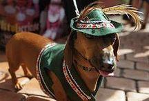 Traditional German Outfits / Traditionell deutsche und andere germanische Trachten