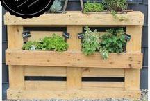 GARTEN - arianebrand.com / Ein kleines Garten ABC - mit kleinen Gartentipps und Hilfen für euren Garten Zuhause.