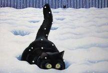 CATS!!!! / by Stephanie Vanden Broek Claus