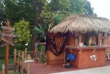 Garden / Yard Ideas / by Gina Newby