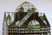 in and under glass: aquarium / terrarium / cloche / globe / by jules