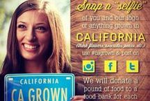 CA GROWN / Featuring products grown and developed in the great state of California. #CAGrown