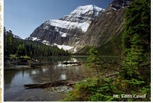 Alberta Travel Ideas / by Debbie VanWyck
