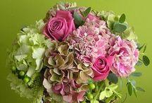 Bloomin' Beauty / by Laura Vint