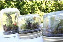Baby Food Jars / by POPSUGAR Moms