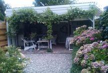 Garden / by Loes Vd Veer