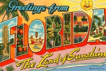 Florida...Oh The Places I Have Roamed / by Michele Bonotto