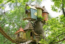 Treehouses...  / by Mary Krass