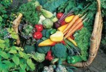 Growing Vegetables and Herbs / Dreaming of a vegetable garden? Here are inspiring tips and ideas for your vegie patch