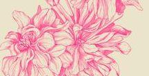 F l o w e r s / I love Flowers