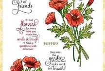 Poppies Labels Twenty Nine
