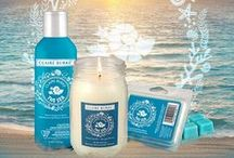 Return to THE SEA® / We're inspired by the beauty of the sea and all of it's wonder.  Walks on the beach, crashing waves and an oceanside breeze. For 2015, Claire Burke® welcomes you back to The Sea®. A scent some will remember and all will adore, floral bouquets combined with sheer musk, vanilla and vetiver make up this refreshing aquatic fragrance.  #tbt #returntothesea
