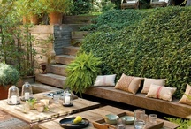 Home - Backyard / by Carlo A.