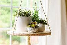 Fine ideas and DIY projects