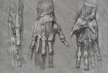 Art - study - Hands & Legs / by CHRISTO Philo