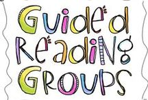 Guided Reading/Third Grade Literacy