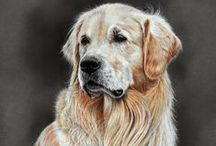 Art - About Dogs / by CHRISTO Philo