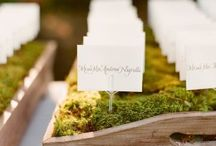Seating Chart/ Escort Cards/ Table Number Ideas / by Ineca