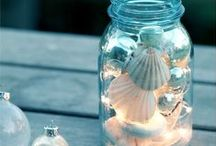 Sea shells by the seashore X / This is a collection of really pretty shells X