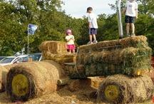 Farm Fun! / Fun things that inspire us to do at our farm!
