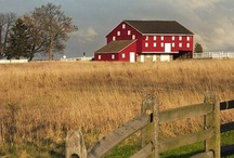 Barns/Cabins/House's / by Betty Cumbus