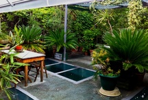 Gardens, plants and outside spaces / by Natalie Brown