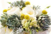 Events: Bouquet Love! / Bridal bouquets by Jen's Blossoms & other floral designers.