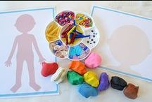 Homeschool Ideas / crafts and activities for homeschool lessons, homeschool lesson ideas