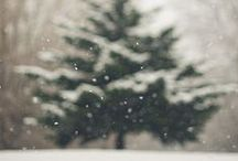Winter / by Hannah Richason